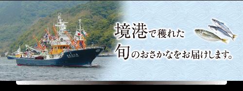 山陰旋網漁業協同組合HP